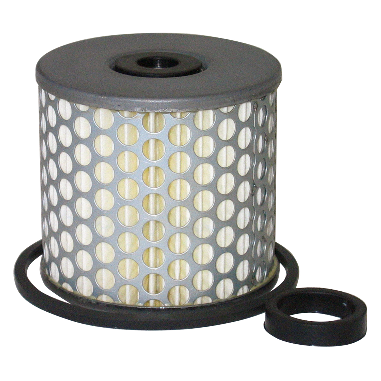 Professional Products  Fuel Filter Replacement Element