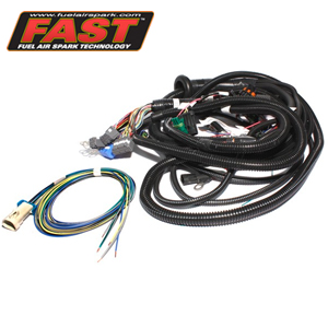 Fast, Main Harness for XFI Standalone Fuel Injection System ... on fuel injection conversion wiring, dodge fuel injection wire harness, fuel injection gauge, fuel injection fuel pressure regulator, fuel injection voltage regulator, fuel injection harness connector, fuel injection fuse, fuel injection throttle cable, fuel injection vapor lock, 6.5 diesel glow plug harness, fuel rail wiring harness, fuel injection flow divider, fuel injection seat, fuel injection air cleaner, fuel injection fuel rails, fuel injection diagram, fuel injection systems, fuel injection control module, fuel injection spark plug, fuel injection generator,