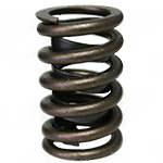 Hi-Tech Racing Products, LT-1/Z-28 Chev SB Valve Springs, 1.250